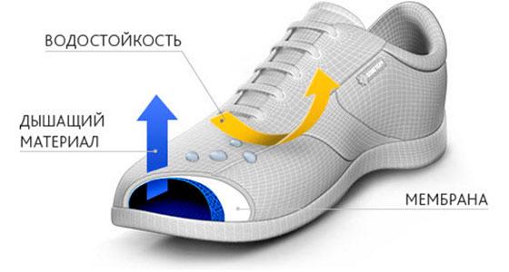 Выбор кроссовок: с мембраной или без?