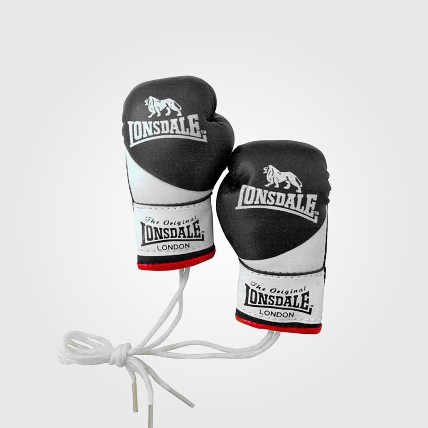 Боксерские перчатки Lonsdale Mini Gloves Multi
