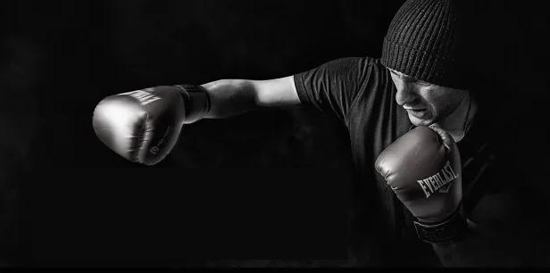 Тренировочные боксерские перчатки Everlast Protex 2 - Обзор
