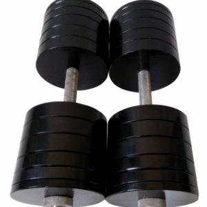 Гантели наборные по 50 кг (сталь) с порошковой покраской