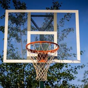 Баскетбольный щит 1200х900 мм тренировочный