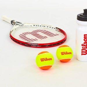 Набор для большого тенниса Wilson Roger Federer