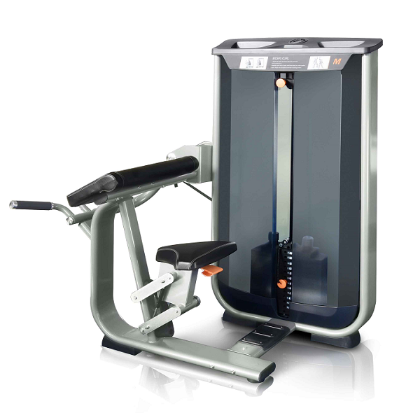 Бицепс машина PowerStream V8-506