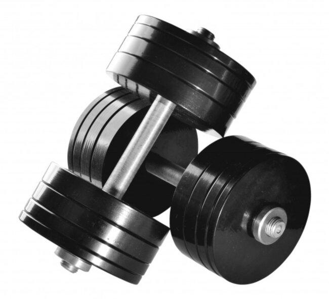 Гантели разборные стальные 2 шт по 28 кг с порошковой покраской