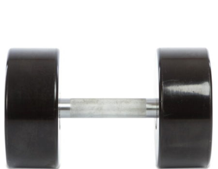Гантель цельная профессиональная Life Fitness (1шт) SC-80081-30 30кг (полиуретановое покрытие, вес 30кг