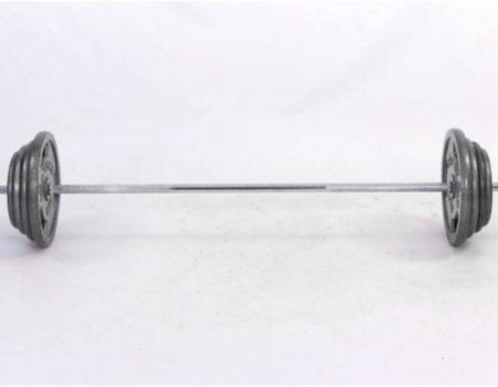 Штанга 80кг (серая покраска) TA-2431-80