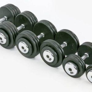 Гантельный ряд профессиональный RECORD от 2.5 до 25 кг