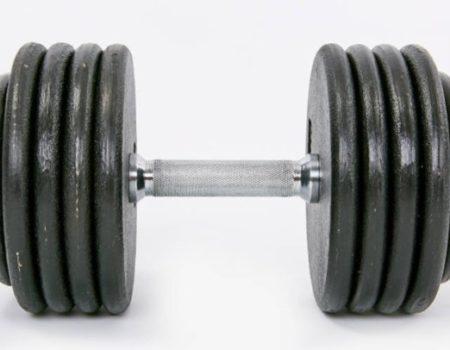 Гантельный ряд профессиональный RECORD от 2.5 до 50 кг